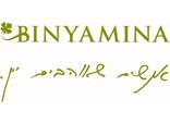 Binyamina logo s
